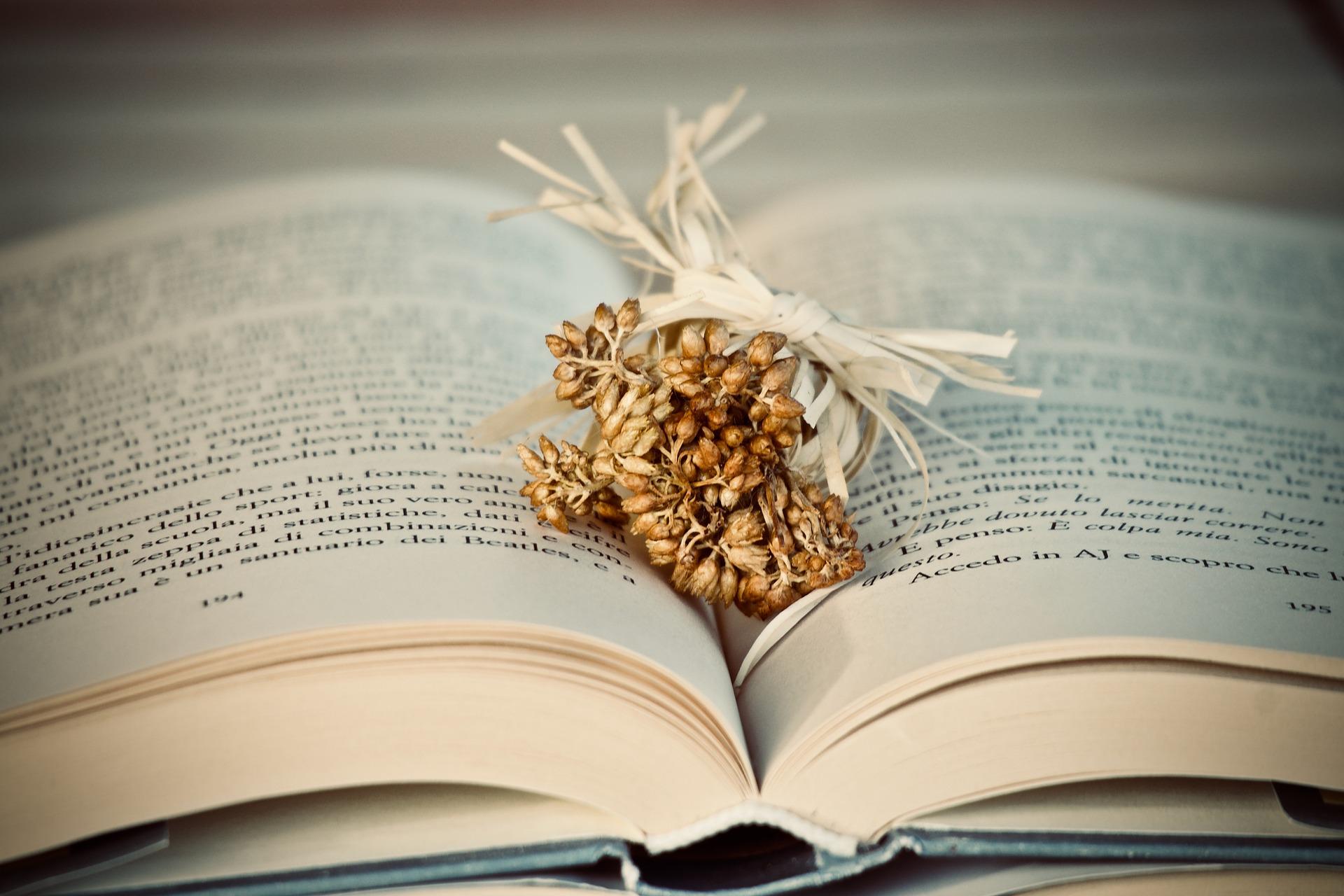 book-3841170_1920.jpg